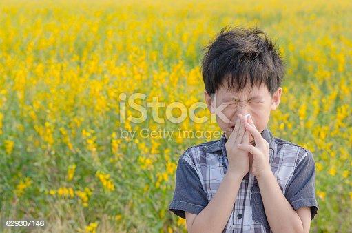 Little Asian boy has allergies from flower pollen in field