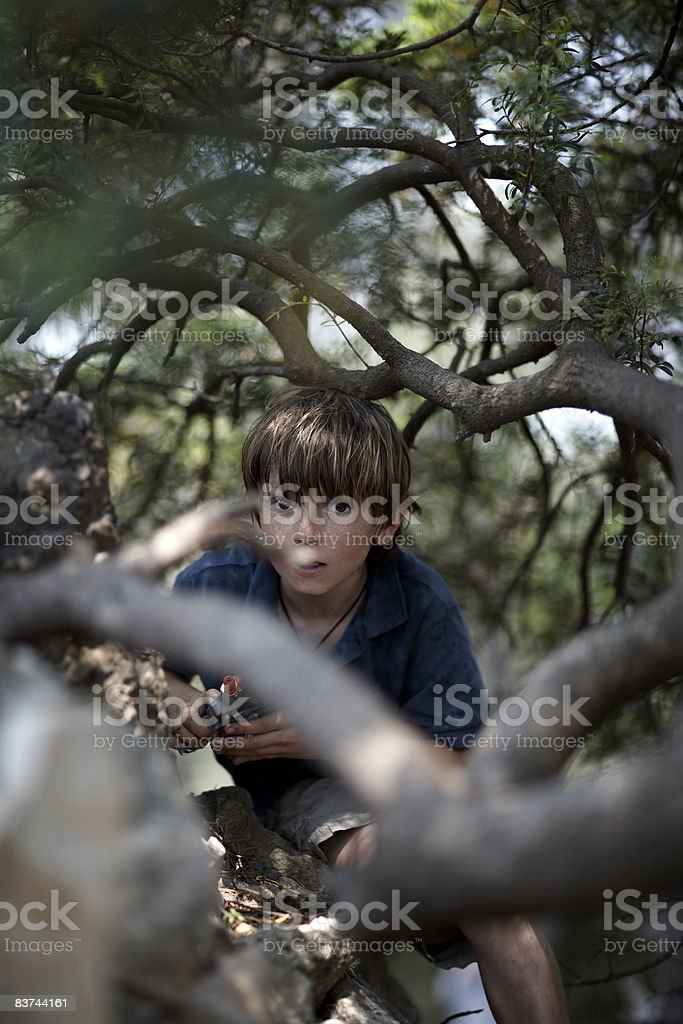 boy hides in bushes royalty-free stock photo