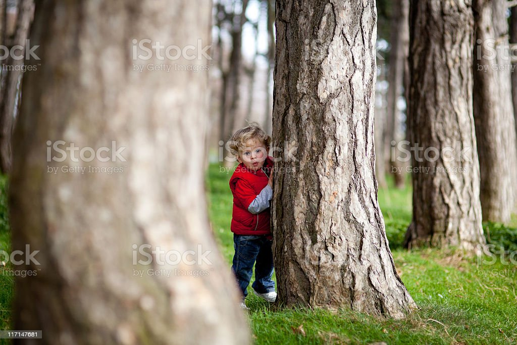 Boy hiding behind tree royalty-free stock photo