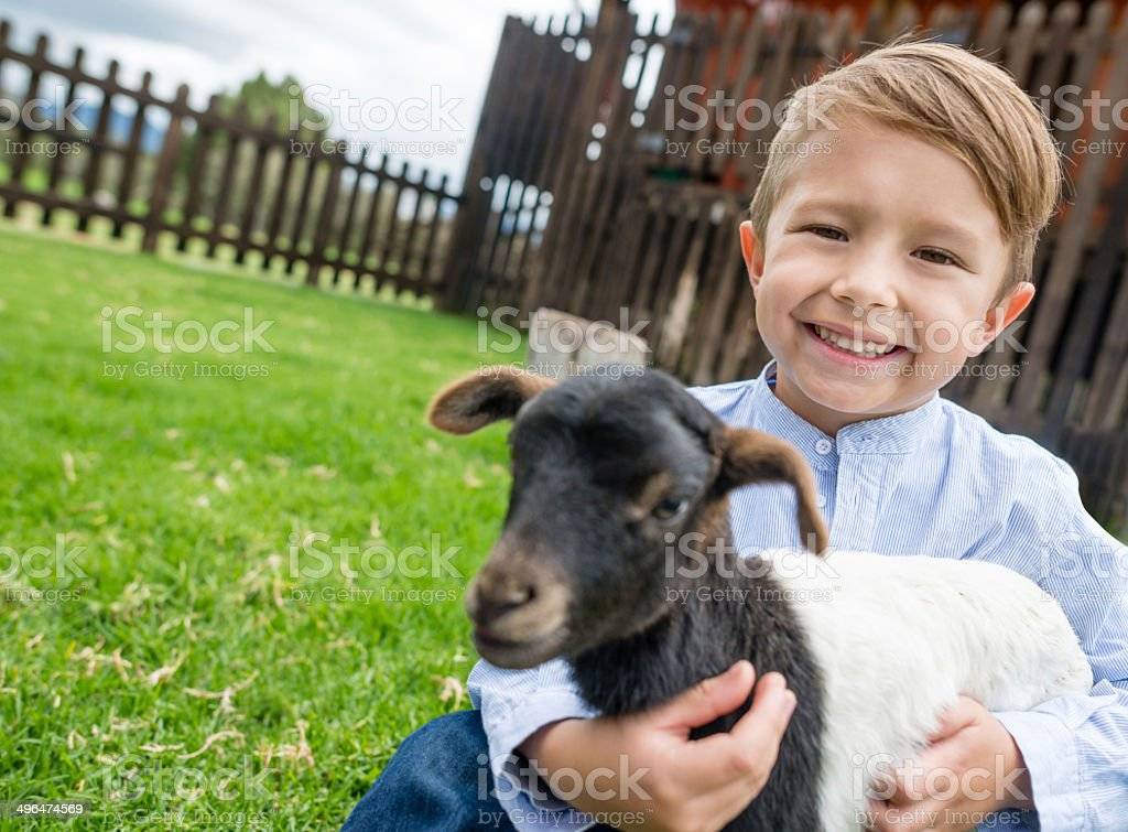 Boy holding a goat royalty-free stock photo