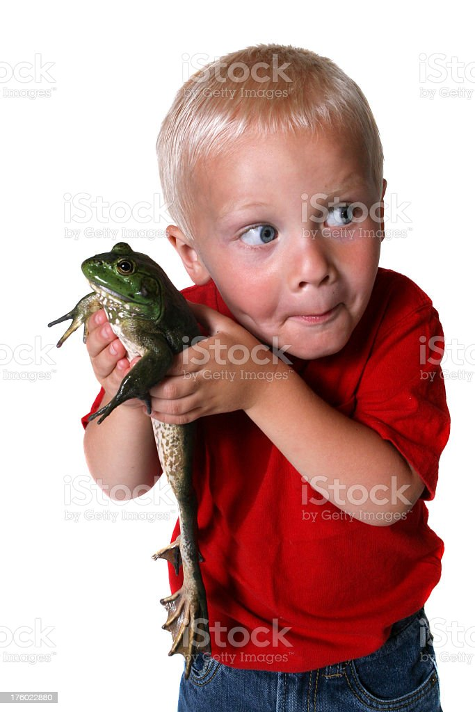 Boy holding bullfrog sneaking around royalty-free stock photo