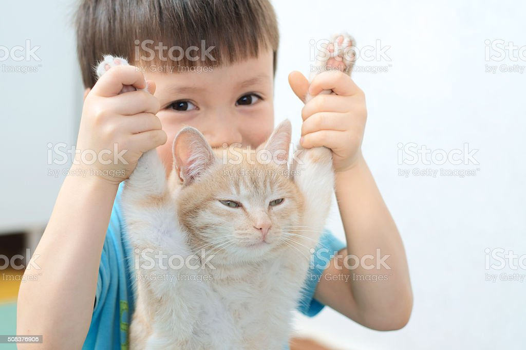Boy holding forelegs of lazy ginger cat stock photo