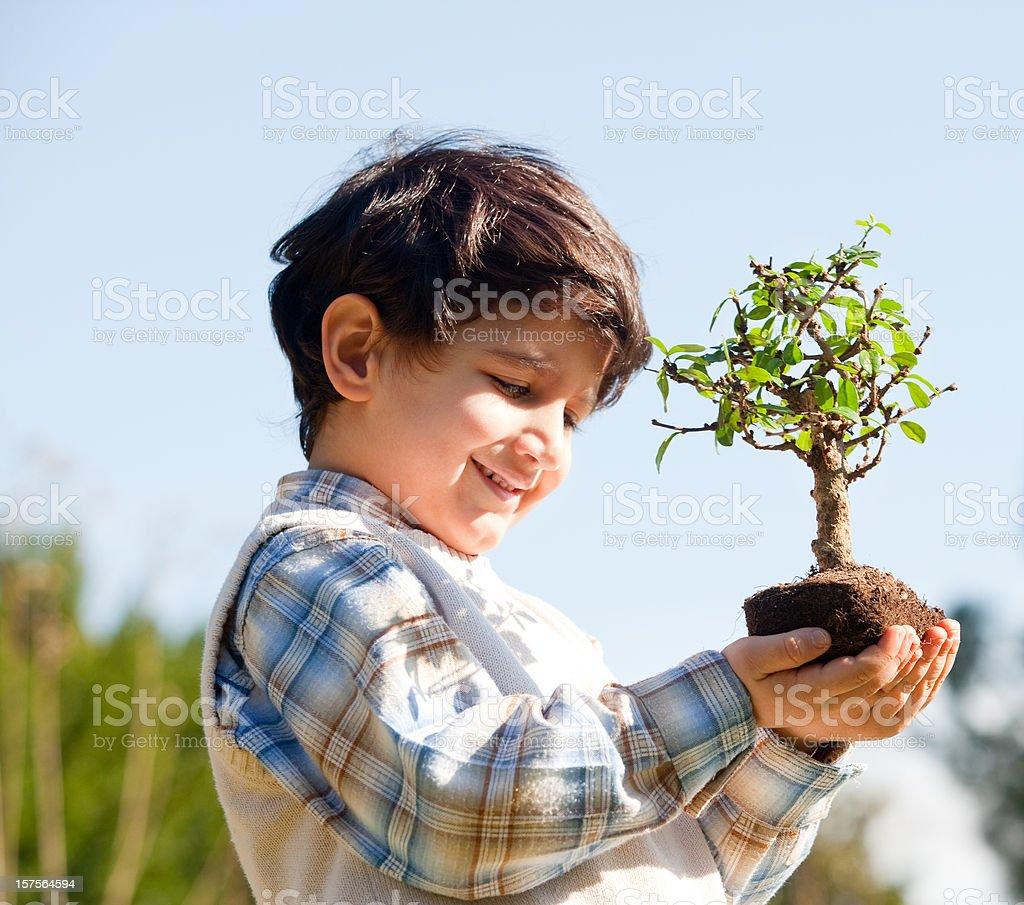 Boy holding tree royalty-free stock photo