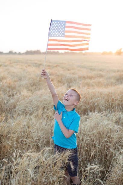 Boy holding up USA flag in wheat field stock photo