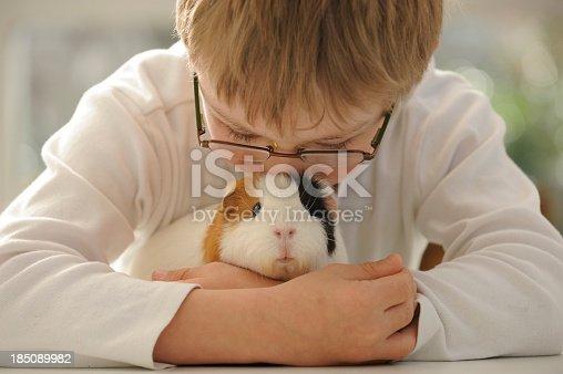 Nine year old boy is hugging a guinea pig