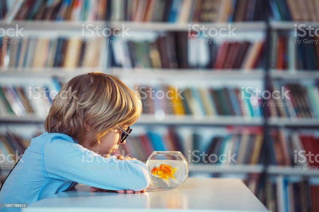 Junge in der Bibliothek – Foto