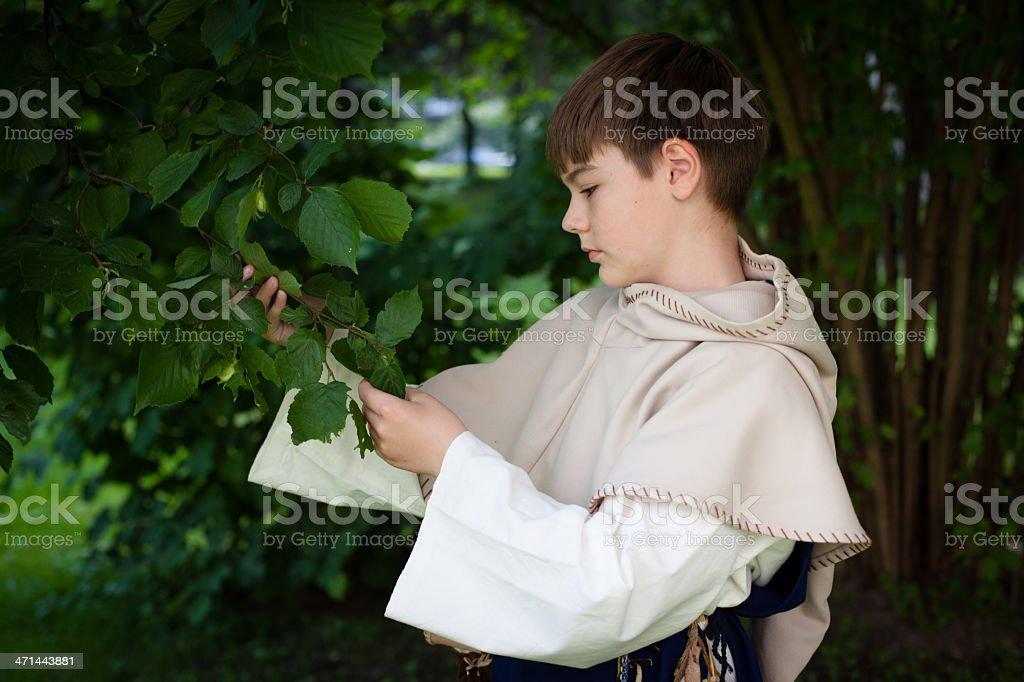 boy in mediaeval clothing at a hazelnut tree royalty-free stock photo
