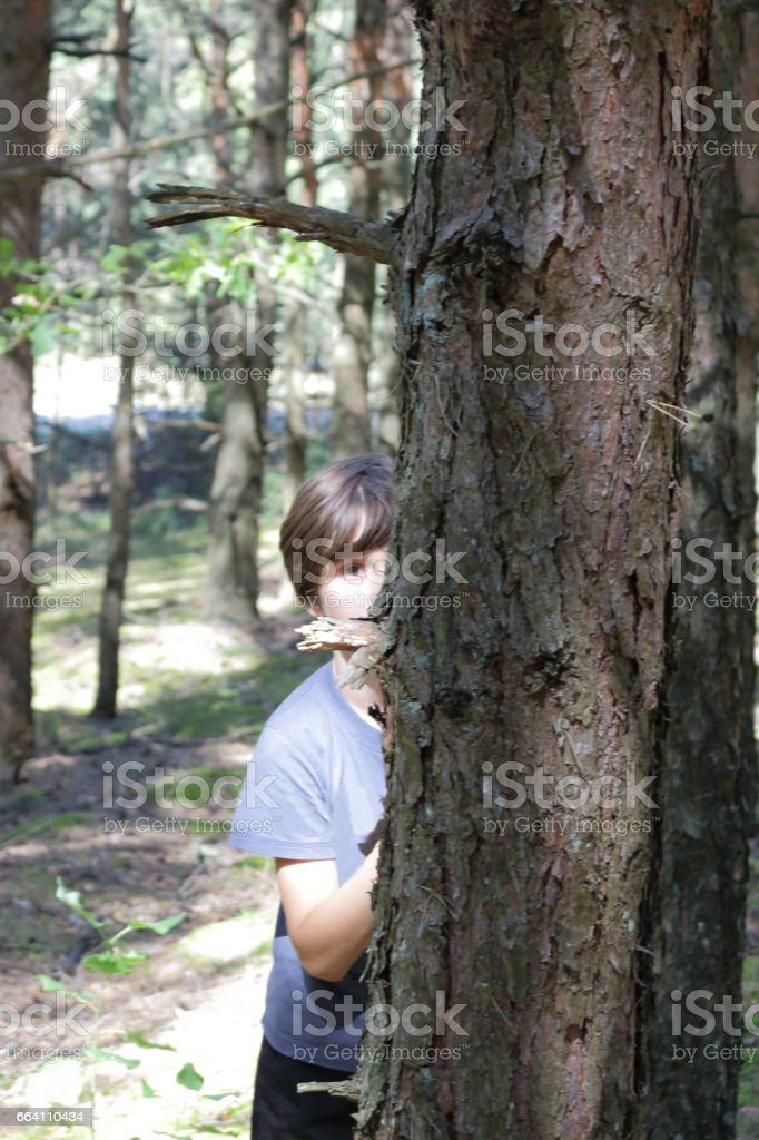 Boy in the forest. foto stock royalty-free