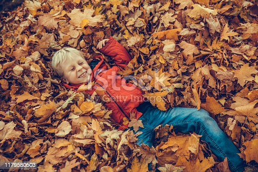 Boy in the autumnal park