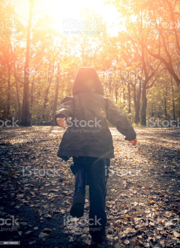 Boy in the park stock photo