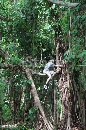 istock Boy in the tropical rainforest is sitting on a tree brunch. 697756806