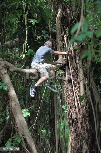 istock Boy in the tropical rainforest is sitting on a tree brunch. 697757078