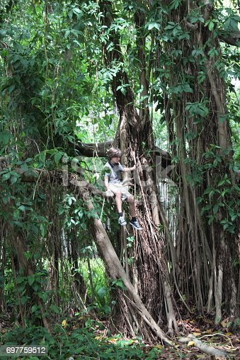 istock Boy in the tropical rainforest is sitting on a tree brunch. 697759512