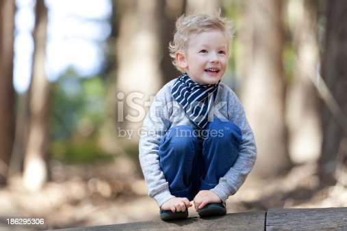 istock boy in the woods 186295306