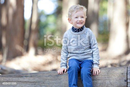 istock boy in the woods 453451335