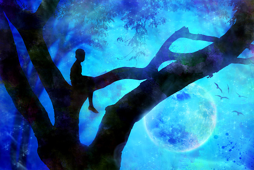 artwork from a boy in a tree silhouette at night with moon in background; inside a forest