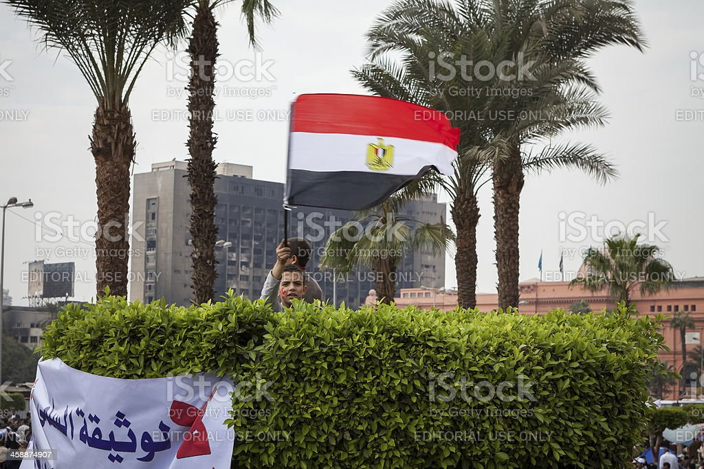 Boy in tree with the egyptian flag stock photo