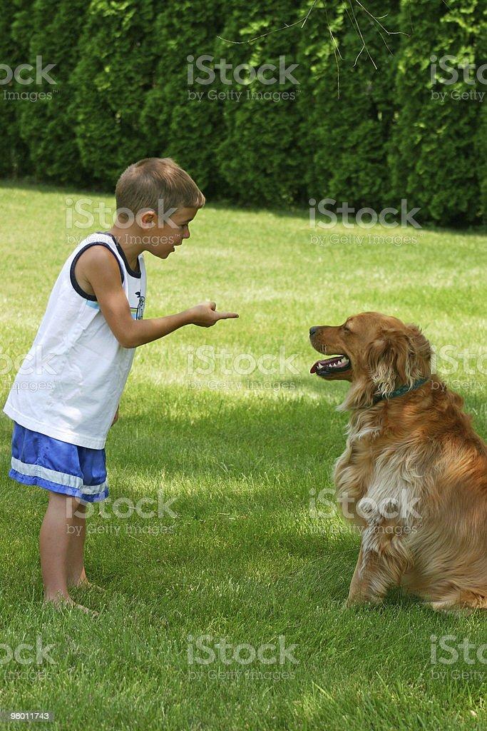 Menino instruindo Cachorro foto royalty-free