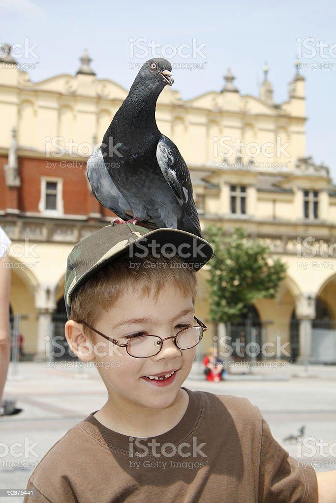 Boy is feeding the birds royalty-free stock photo