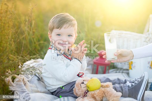 istock Boy kid with milk and fruit on a picnic in sunny day 925288636