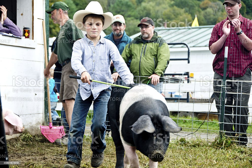 Boy leading a saddleback hog at the Tunbridge Fair, Vermont stock photo