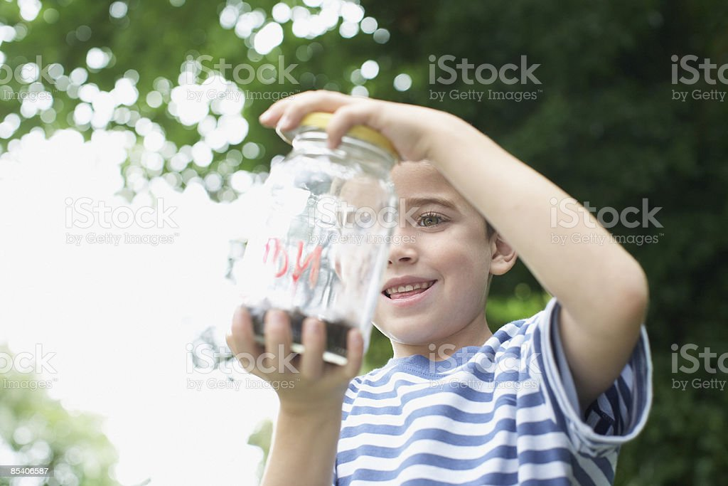 Boy looking at insect jar royalty-free stock photo