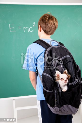 istock Boy looking at school chalkboard with dog in backpack 171359864