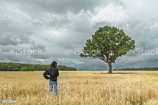 Photo of Boy looking at stunning landscape with huge oak tree