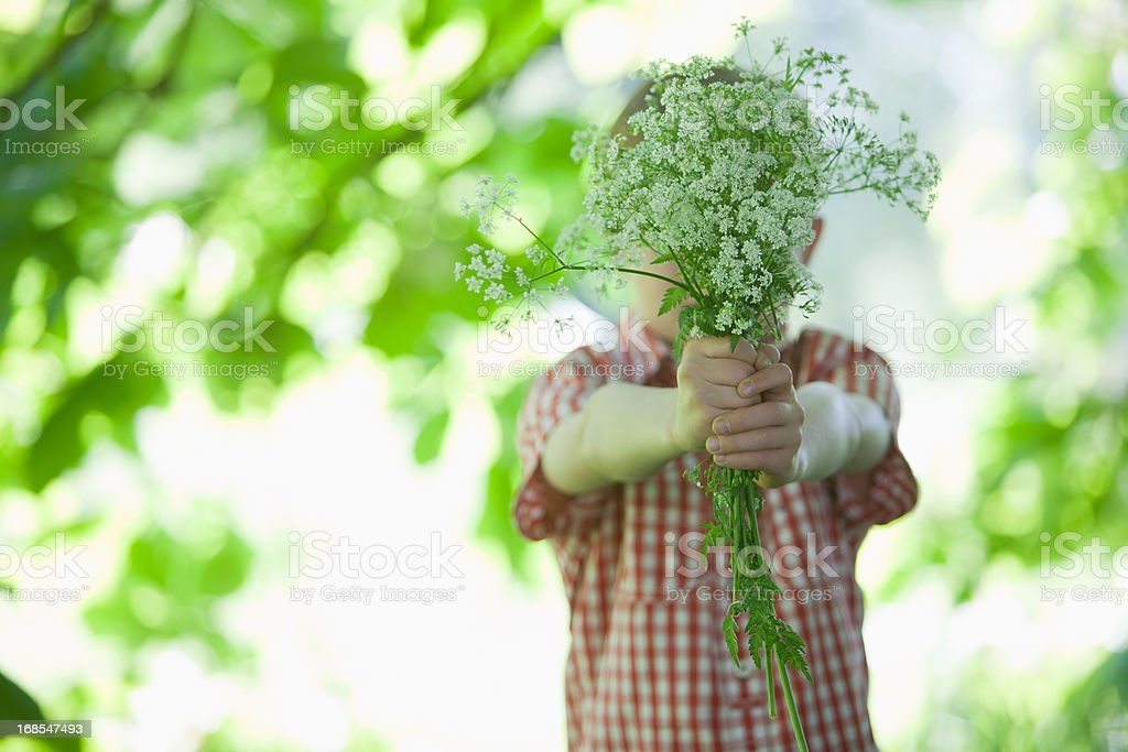 Boy offering bouquet of flowers royalty-free stock photo