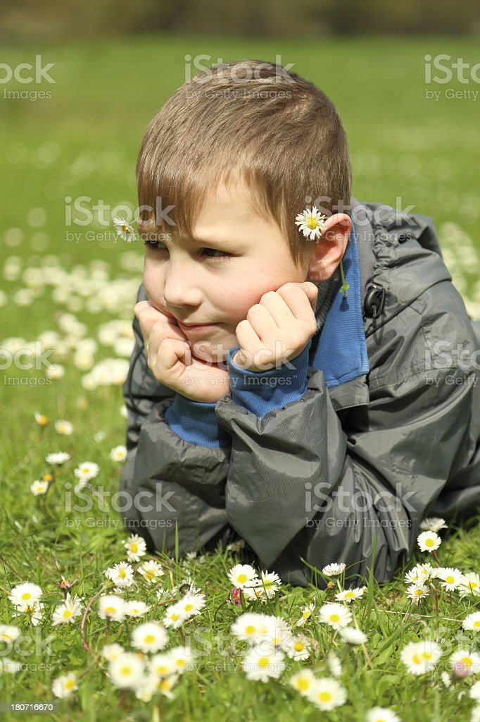 boy on a flower meadow royalty-free stock photo