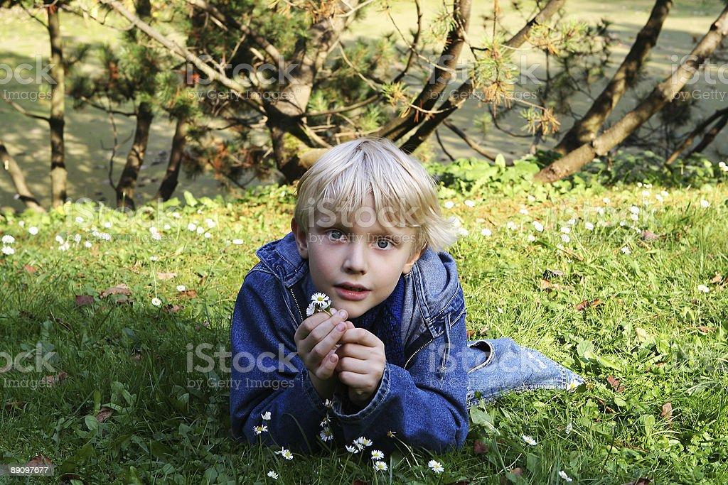 Boy on a Lawn royalty-free stock photo