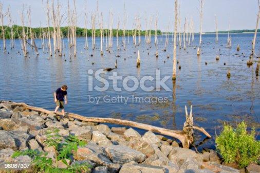A reservoir with a boy exploring the shoreline. The reservoir is Manasquan Reservoir in New Jersey.
