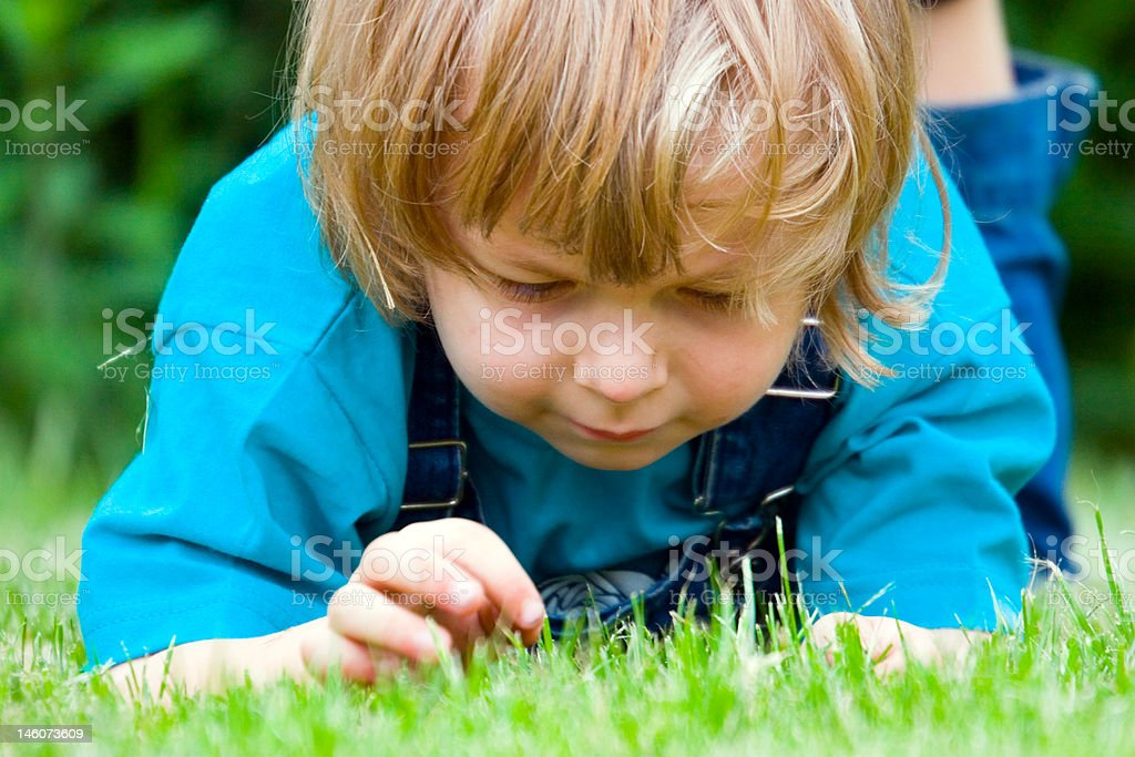 Boy on the grass, summer day (series Children) royalty-free stock photo
