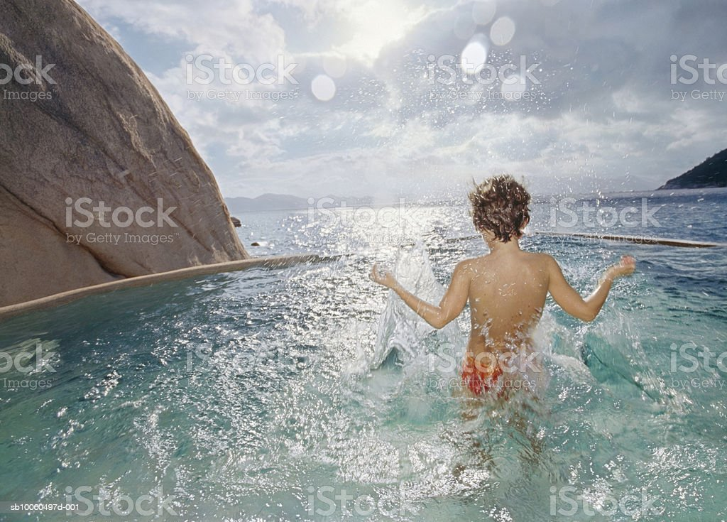 Boy playing in pond, rear view royalty-free 스톡 사진