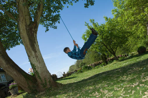 Boy Playing On Tree Swing In Backyard Stock Photo ...