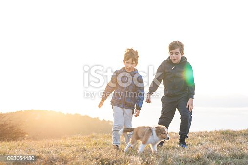 istock Boy Playing With a Puppy 1063054480