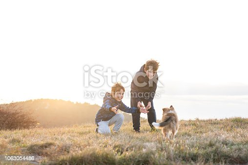 istock Boy Playing With a Puppy 1063054486