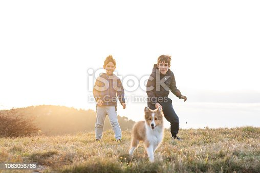 istock Boy Playing With a Puppy 1063056768