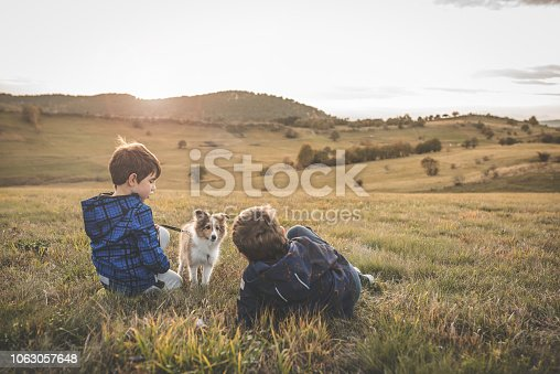 istock Boy Playing With a Puppy 1063057648