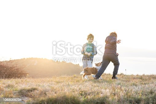 istock Boy Playing With a Puppy 1063058234
