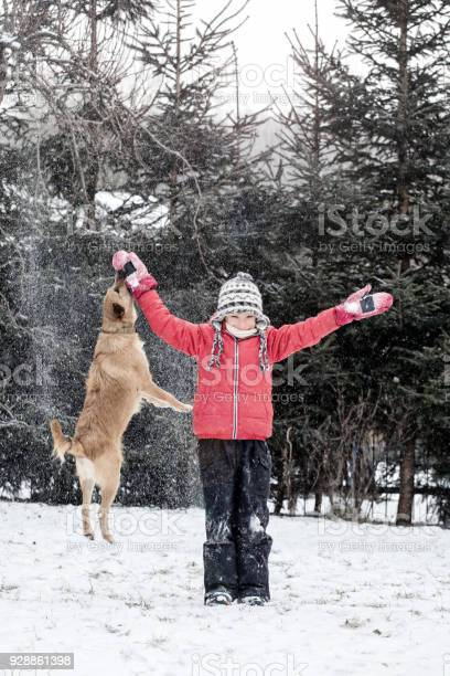 Boy playing with dog on snow in winter picture id928861398?b=1&k=6&m=928861398&s=612x612&h=1gmlew3lv2dmnojy0ltjhtbqlgf8s35wjsqdf2lbxvw=