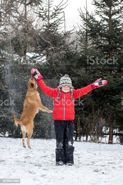 Boy playing with dog on snow in winter picture id928861860?b=1&k=6&m=928861860&s=612x612&h=bxw9sfvovuqidqrpq5zozatu5mv5wbpzxeg7h4srn9a=