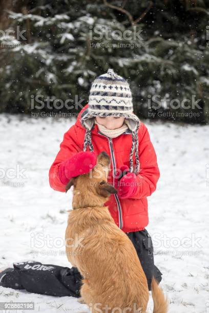 Boy playing with dog on snow in winter picture id928862198?b=1&k=6&m=928862198&s=612x612&h=rjfmm8ypiqg5gjbxb9h6uxeeder3whcqi5vwvqe0gdu=