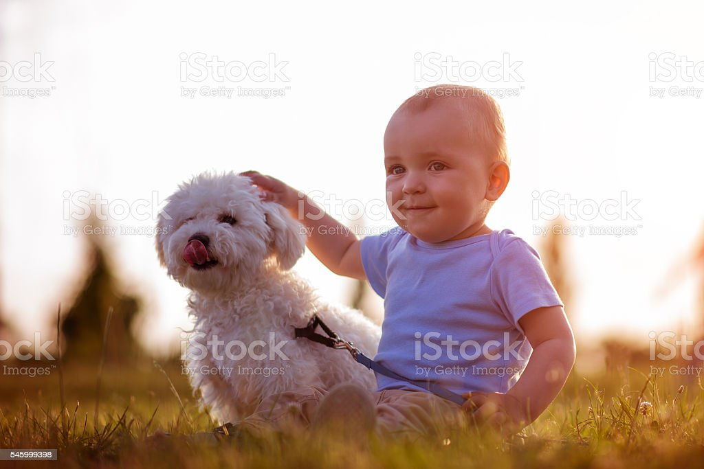 Boy playing with his dog outdoors – Foto