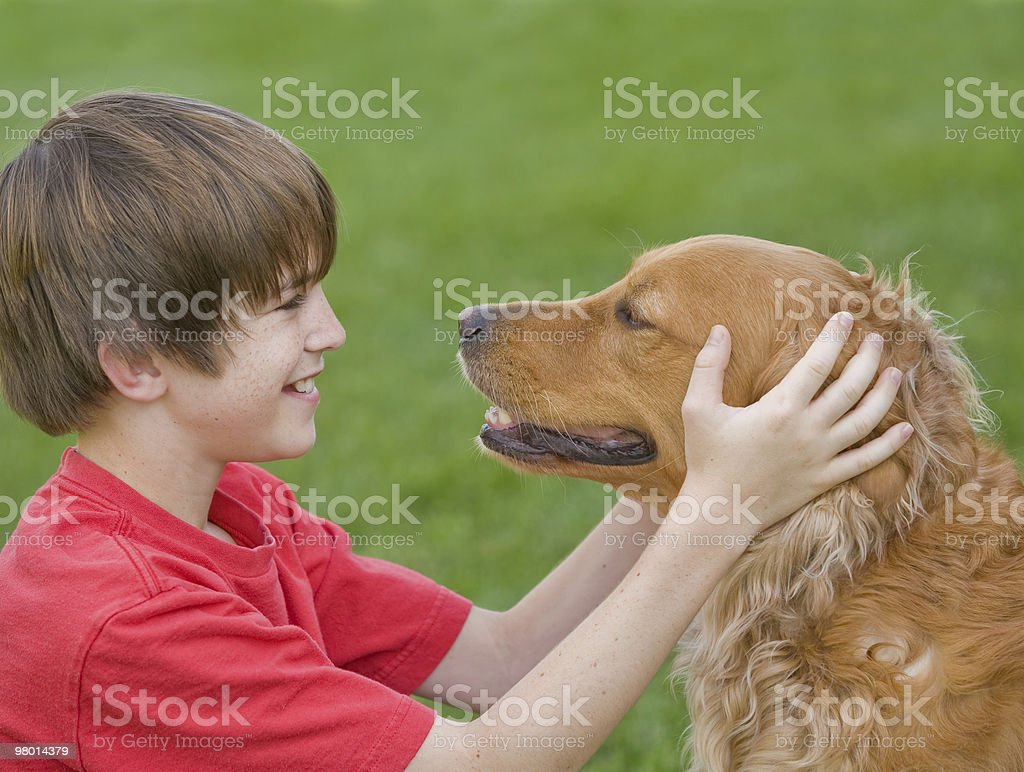 Boy Playing with His Dog royalty-free stock photo