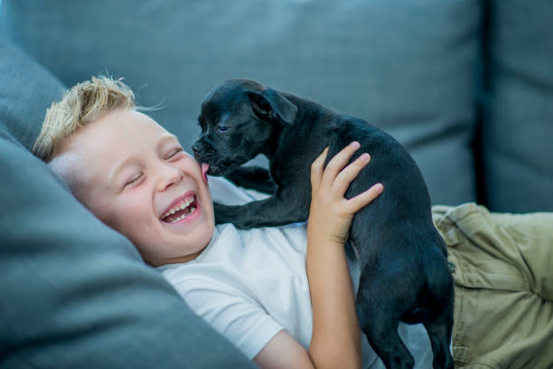 boy playing with puppy - bambino cane foto e immagini stock
