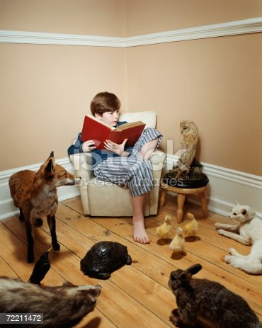 istock Boy reading a story to stuffed animals 72211472