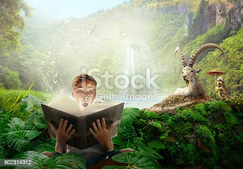 Boy reading a wonderful fairy story. Concept of reading books for children