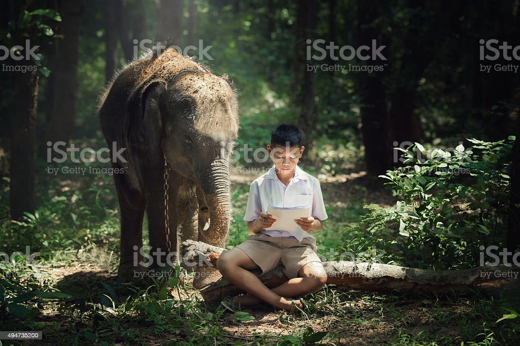 Boy reading book with elephant at Elephant Village school in Thailand. stock photo
