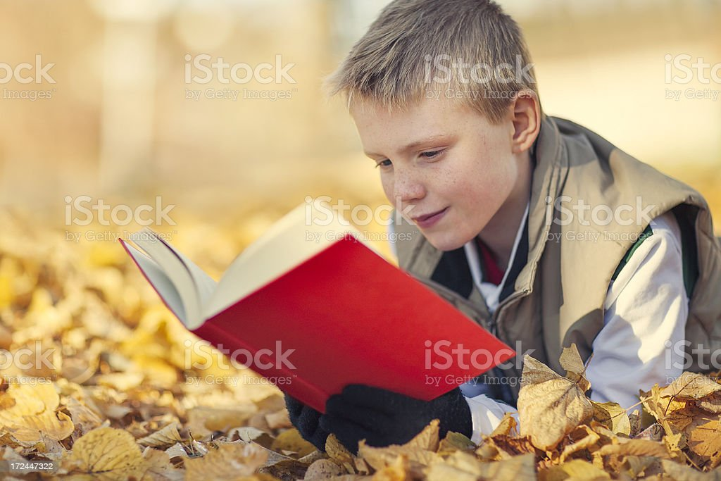 Boy reading outdoors royalty-free stock photo